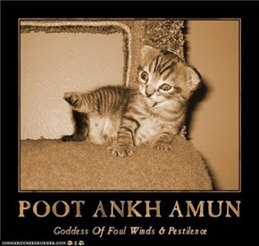 Egyptian Lolcat Deities, Number Elebenty: Poot Ankh Amun - Goddess Of Foul Winds & Pestilence