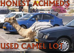 HONEST ACHMED'S  USED CAMEL LOT