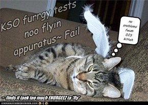 KSO furrgy tests noo flyin appuratus~ Fail