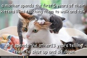 a mother spends the first 5 years of their kittehs lives teaching them to walk and talk