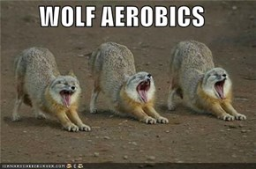 WOLF AEROBICS