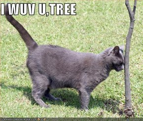 I WUV U,TREE