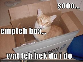 sooo... empteh box,., wat teh hek do i do