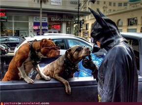 Meanwhile in Gotham