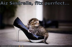 Aiz Sindrella, fitz purrfect...