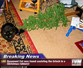 Breaking News - Basement Cat was found assisting the Grinch in a Christmas robbery!