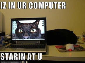 IZ IN UR COMPUTER  STARIN AT U