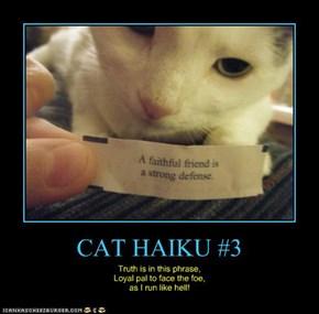 CAT HAIKU #3