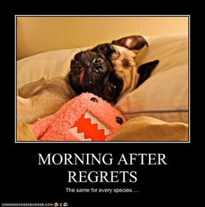 MORNING AFTER REGRETS