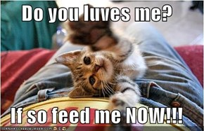 Do you luves me?  If so feed me NOW!!!
