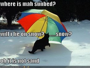 where is mah sunbed? will i lie on snow?     .....snow?  oh it is not sand