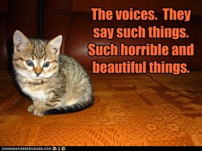 The voices.  They say such things.  Such horrible and beautiful things.