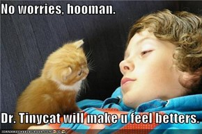 No worries, hooman.  Dr. Tinycat will make u feel betters.