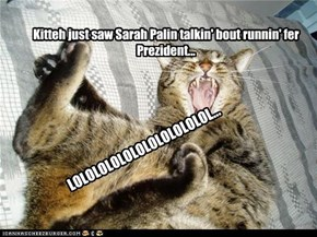 Kitteh just saw Sarah Palin talkin' bout runnin' fer Prezident...