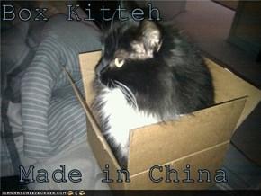 Box Kitteh