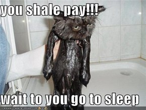 you shale pay!!!  wait to you go to sleep