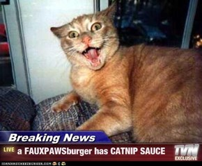 Breaking News - a FAUXPAWSburger has CATNIP SAUCE