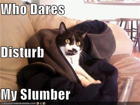 Who Dares Disturb My Slumber