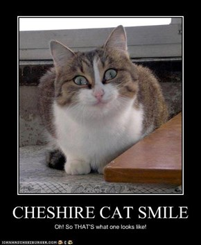 CHESHIRE CAT SMILE
