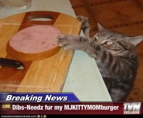 Breaking News - Dibs-Needz fur my MJKITTYMOMburger