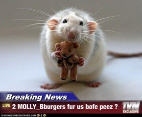 Breaking News - 2 MOLLY_Bburgers fur us bofe peez ?