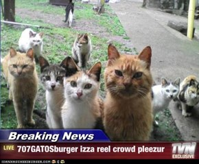 Breaking News - 707GATOSburger izza reel crowd pleezur