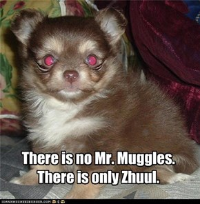 There is no Mr. Muggles.  There is only Zhuul.