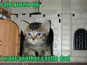 i am grown up   i want another castle dad