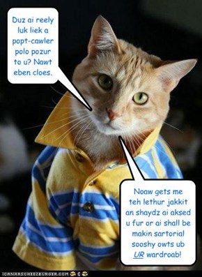 Fashion Cat is Fickle