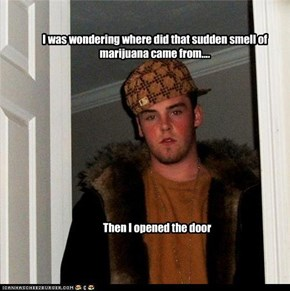 I was wondering where did that sudden smell of marijuana came from....