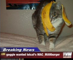 Breaking News - goggie wanted lolcat's MAC_MANburger