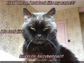 Wot U mean, i not look like my name?? i So look like Sweet Mr. Fuzzybottemz!!