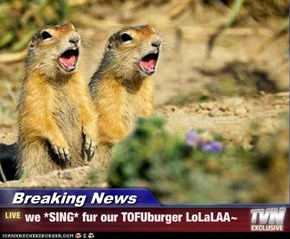 Breaking News - we *SING* fur our TOFUburger LoLaLAA~