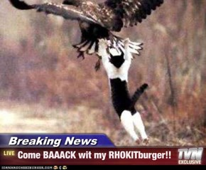 Breaking News - Come BAAACK wit my RHOKITburger!!