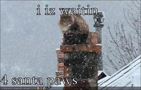 i iz waitin   4 santa paws