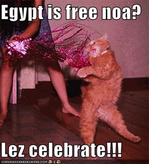 Egypt is free noa?  Lez celebrate!!!