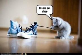 Pet shoo