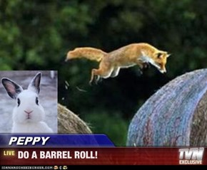 PEPPY - DO A BARREL ROLL!