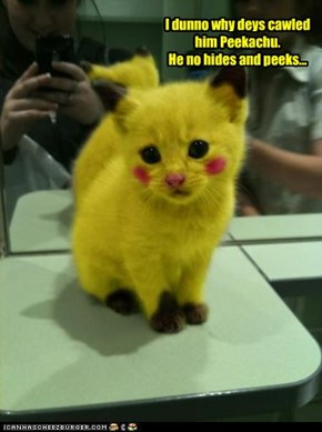 I dunno why deys cawled him Peekachu. He no hides and peeks...