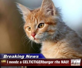Breaking News - I needz a CELTICTIGERburger rite NAU!