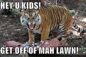 HEY U KIDS!  GET OFF OF MAH LAWN!