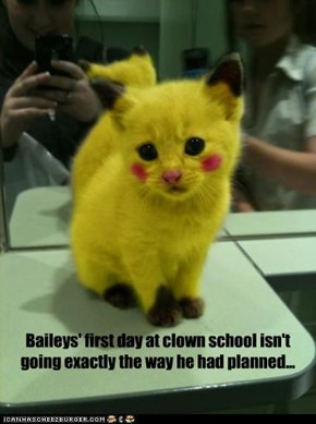Baileys' first day at clown school isn't going exactly the way he had planned...