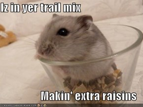 Iz in yer trail mix  Makin' extra raisins