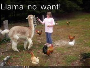 Llama no want!