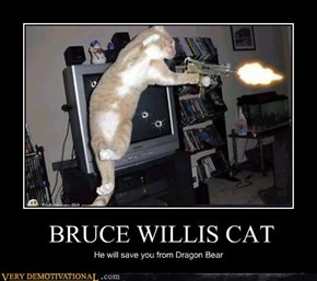 BRUCE WILLIS CAT