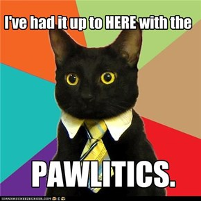 Business Kitty: Workplace Power Struggle