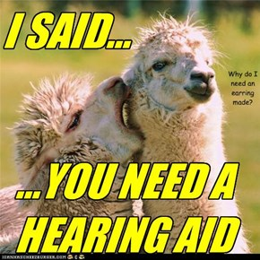 You Need A Hearing Aid