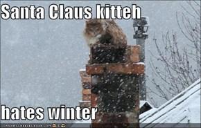 Santa Claus kitteh  hates winter