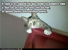 O,  gud  u  es  awaek!  Ai  wuz  bowt  tu  pownce  own  u.  But,  til  ai  seez  ur  feetz  hit  da  flor,  ai  gonna  keepz  dat  opshun  openz.