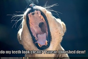 do my teeth look clean? I swear, I brushed dem!